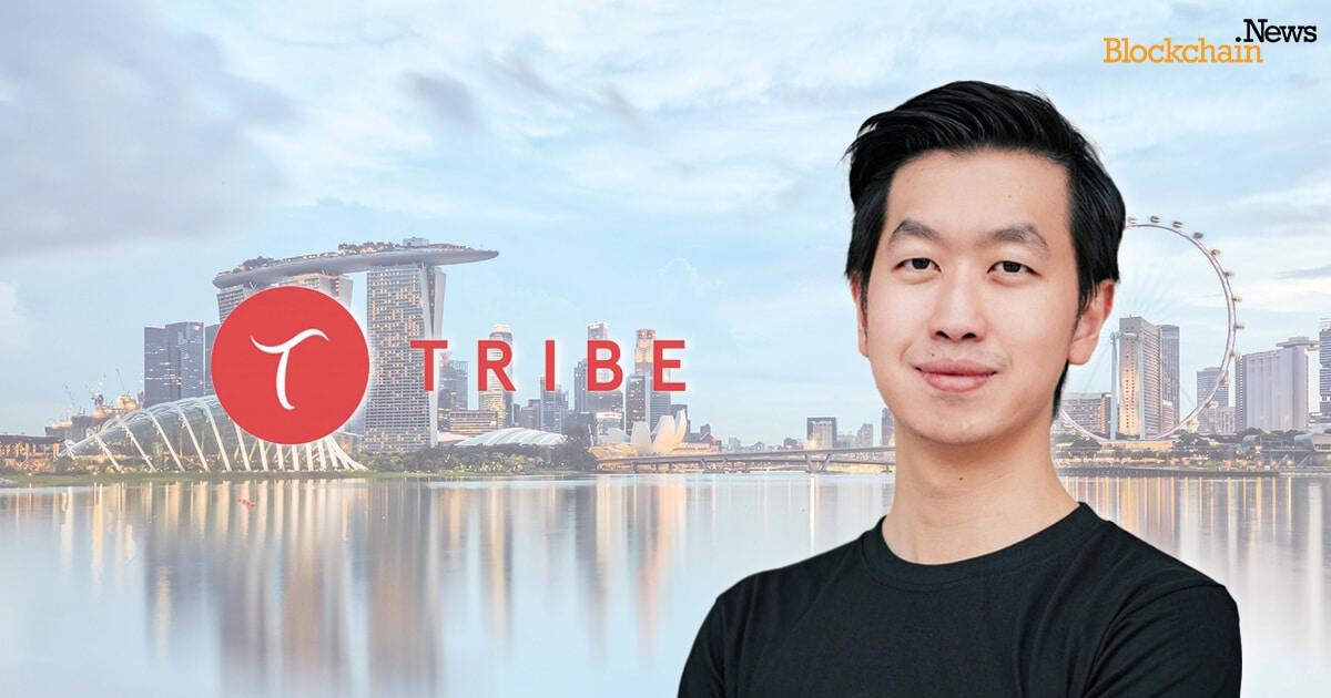 Tribe Accelerator Blockchain News.jpg