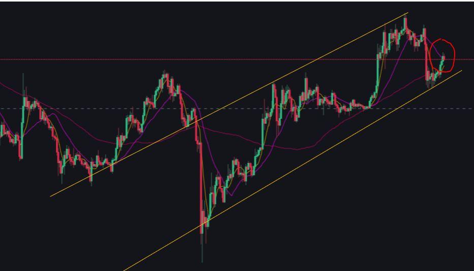 Bitcoin-Price-Chart.jpg