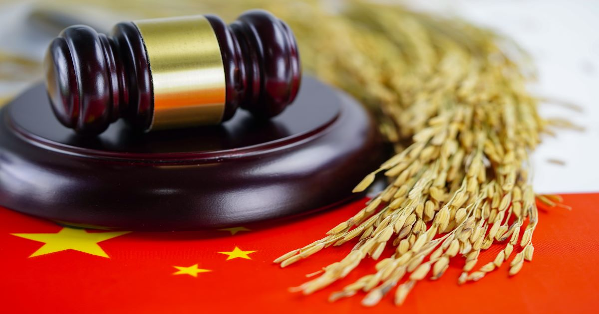 china law feature-min.jpg