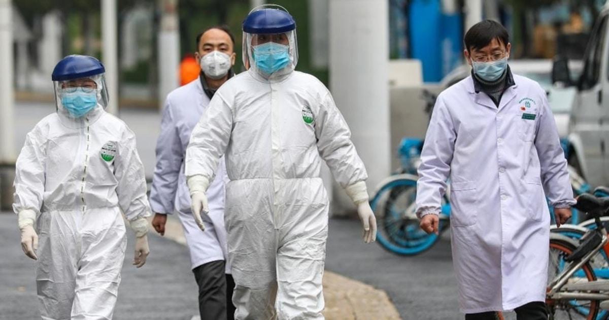 coronavirus in dogs_china_wuhan_outbreak.jpg