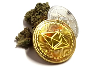 Blockchain Technology Reduces Cash Reliance In The Cannabis Industry