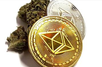 区块链技术减少了大麻行业的现金依赖
