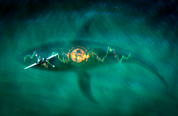 18,000 Bitcoin Whales Circle the Crypto Market, Each Holding At Least $1 Million in Bitcoin