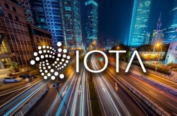 Chronicle: The Long Term Data Solution for IOTA