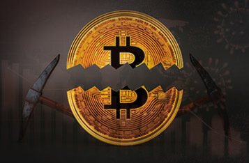 Can We Expect a Bitcoin Bull Run Amid the Upcoming Bitcoin Halving and Coronavirus Pandemic?