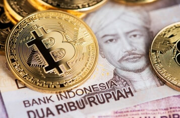 1 in 9 Indonesians hold Cryptocurrency, Hootsuite Report