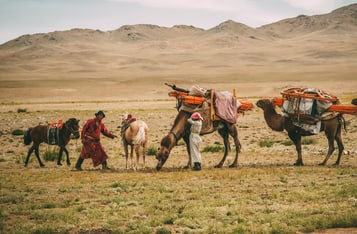 Canadian Blockchain Project to Assist Mongolian Nomadic Farmers Fight Income Instability