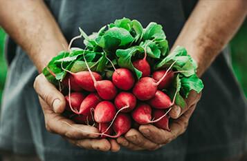 区块链如何帮助食品行业节省310亿美元的成本?