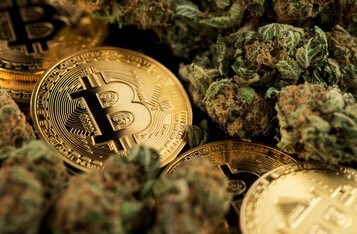 Why Young Investors are Increasingly Investing in Crypto and Cannabis